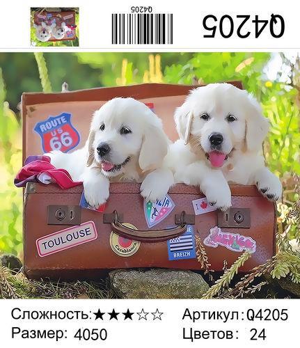 """РН Q4205 """"Два белых щенка в чемодане"""", 40х50 см"""