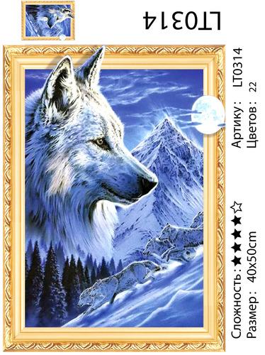 """АМ3D LT0314 """"Волк, горы"""", 40х50"""