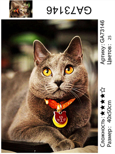 "АМ45 GA73146 ""Кошка-британка"", 40х50 см"
