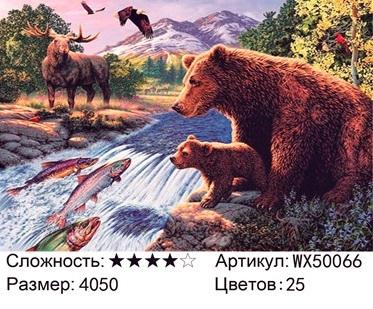 АБП45 WX50066, 40х50 см