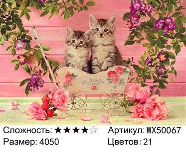 АБП45 WX50067, 40х50 см