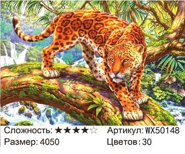 АБП45 WX50148, 40х50 см