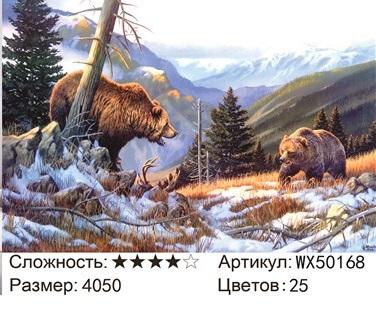 АБП45 WX50168, 40х50 см
