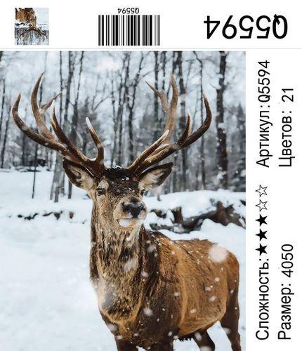 РН Q5594, 40х50 см