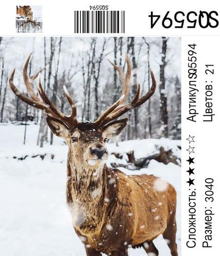 РЗ SQ5594, 30х40 см