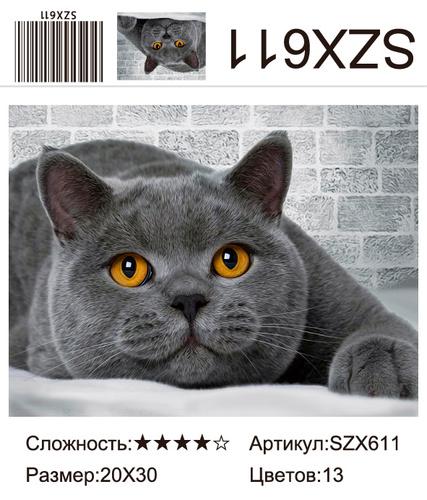 AM23 SZX611, 20х30 см