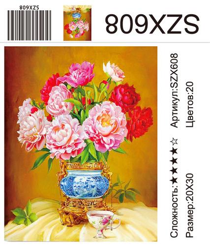 AM23 SZX608, 20х30 см