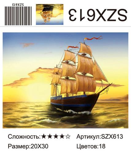 AM23 SZX613, 20х30 см