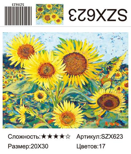 AM23 SZX623, 20х30 см
