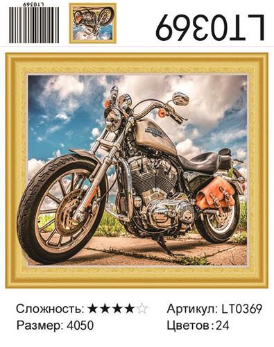 АМ45 5D LT0369, 40х50 см