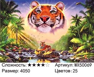 АБП45 WX50069, 40х50 см