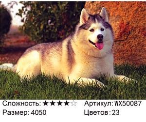 АБП45 WX50087, 40х50 см