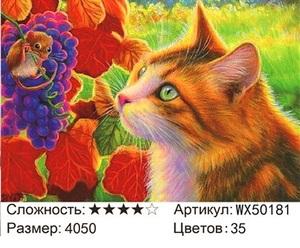 АБП45 WX50181, 40х50 см