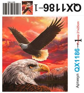 АЧ QX1186, 21х25 см