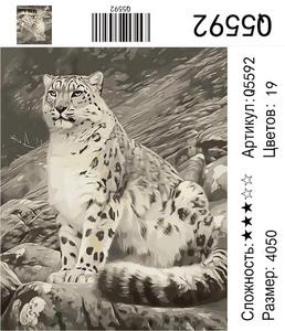 РН Q5592, 40х50 см