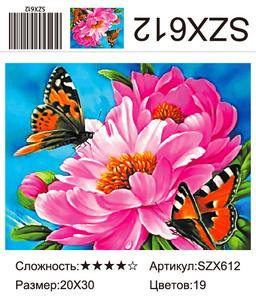 AM23 SZX612, 20х30 см