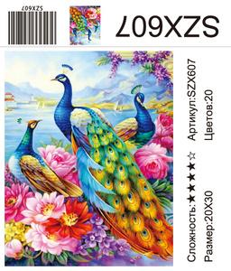 AM23 SZX607, 20х30 см