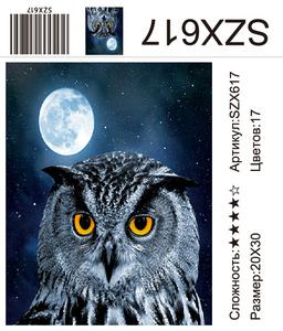 AM23 SZX617, 20х30 см