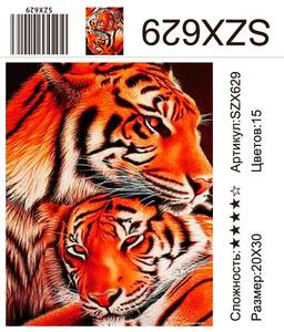 AM23 SZX629, 20х30 см