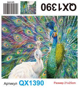 АЧ QX1390, 21х25 см
