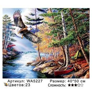 РН WA5227, 40х50 см
