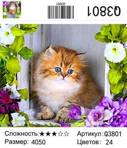 """РН Q3801 """"Котенок"""", 40х50 см"""