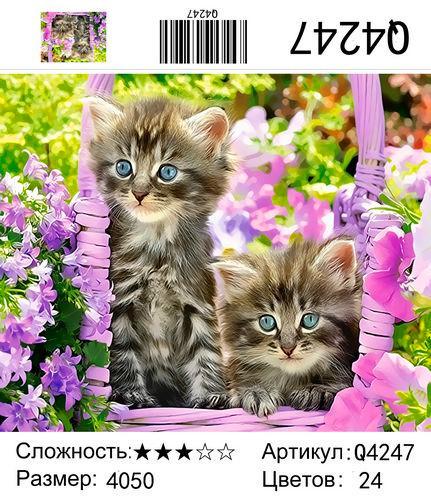 """РН Q4247 """"Два котенка"""", 40х50 см"""