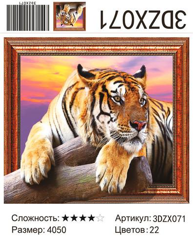 """АМ3D ZX071 """"Тигр лежит на камне"""", 40х50"""