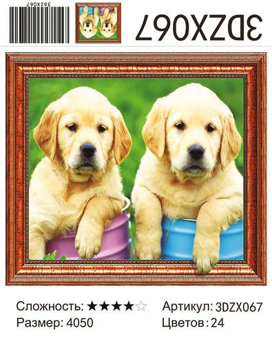 """АМ3D 067 """"Два щенка"""", 40х50"""