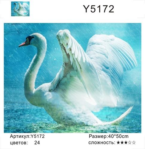 """РН Y5172 """"Лебедь под дождем"""", 40х50 см"""