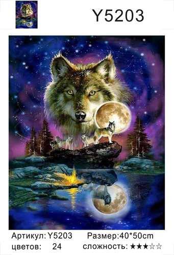 """РН Y5203 """"Волк в ночи"""", 40х50 см"""