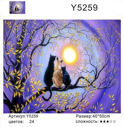 """РН Y5259 """"Кошачья семья смотрит на луну"""", 40х50 см"""