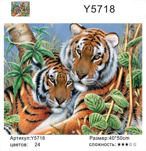 """РН Y5718 """"Тигриная пара"""", 40х50 см"""
