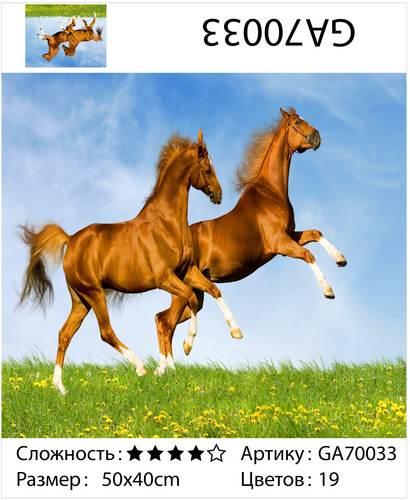 """АМ45 GA70033 """"Две коричневых лошади"""", 40х50 см"""