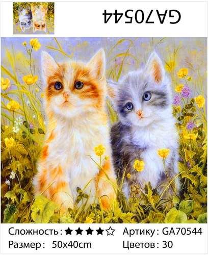 "АМ45 GA70544 ""Два котенка"", 40х50 см"