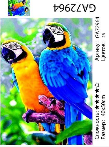 "АМ45 GA72964 ""Два попугая"", 40х50 см"