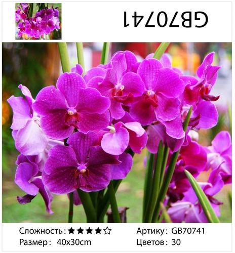 "АМ34 GB70741 ""Лиловые цветы"", 30х40 см"