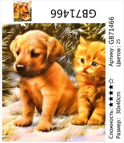 "АМ34 GB71466 ""Щенок и котенок"", 30х40 см"