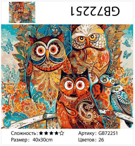"""АМ34 GB72251 """"Цветные совы"""", 30х40 см"""