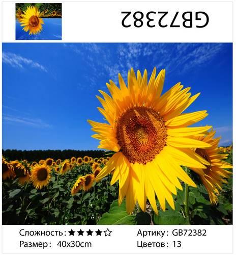 """АМ34 GB72382 """"Подсолнухи на фоне неба"""", 30х40 см"""