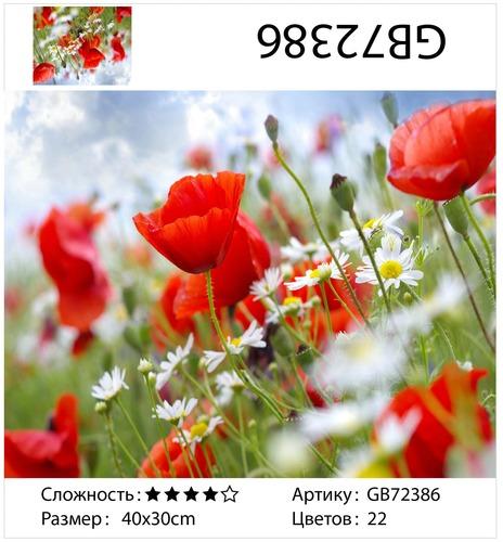 """АМ34 GB72386 """"Маки и ромашки в поле"""", 30х40 см"""