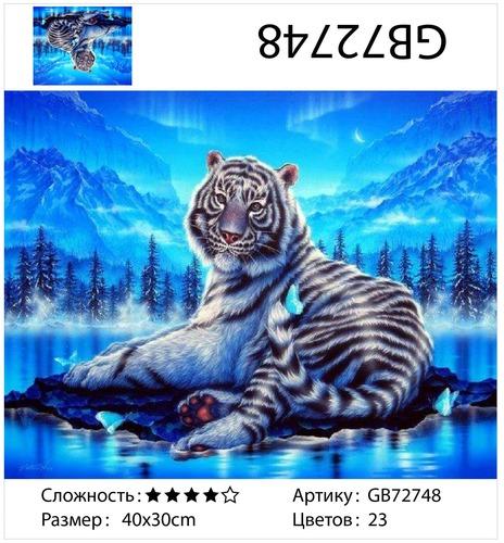 """АМ34 GB72748 """"Тигр на фоне северного сияния"""", 30х40 см"""