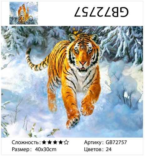 "АМ34 GB72757 ""Тигр бежит по снегу"", 30х40 см"