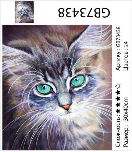 "АМ34 GB73438 ""Кошка с бирюзовыми глазами"", 30х40 см"
