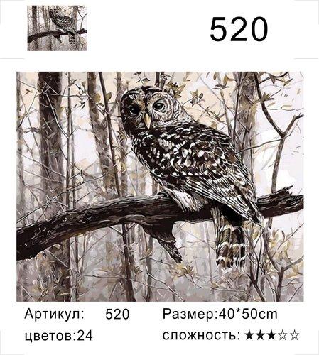 """РД 520 """"Сова на ветке"""", 40х50 см"""