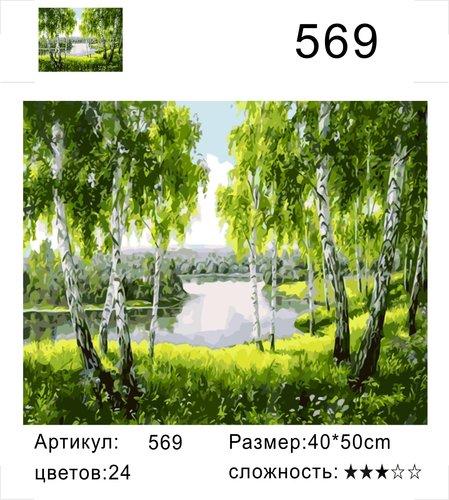 "РД 569 ""Река за березами"", 40х50 см"