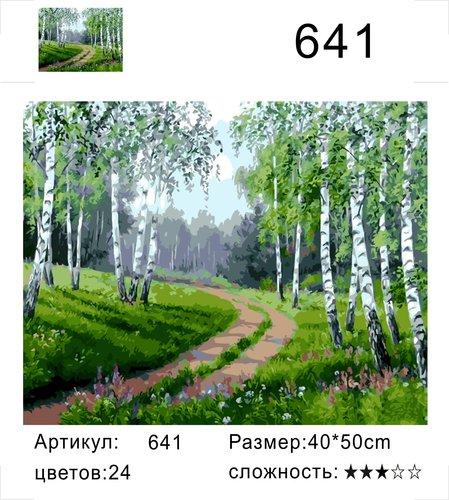 "РД 641 ""Дорога среди берез"", 40х50 см"