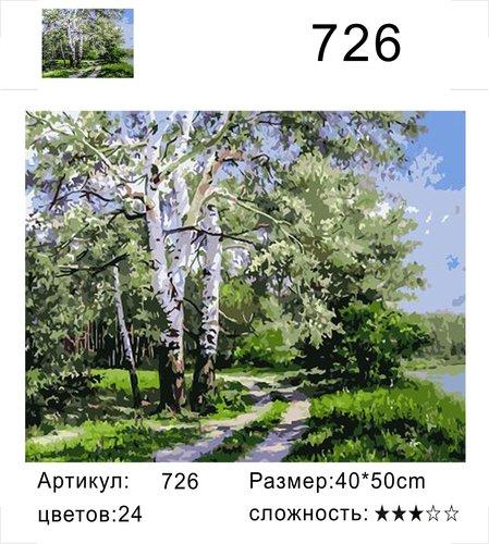 """РД 726 """"Дорога под березами"""", 40х50 см"""