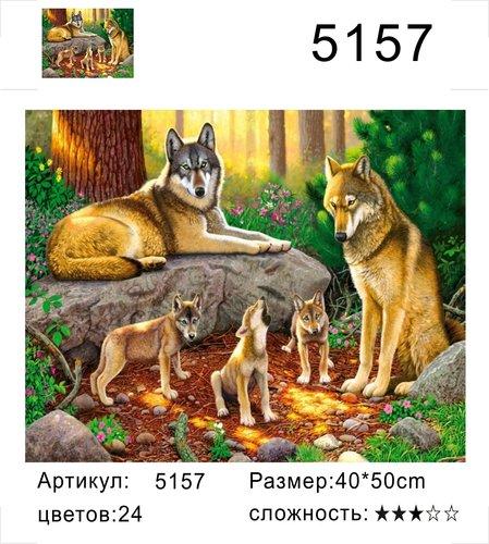 """РД 5157 """"Волчья семья"""", 40х50 см"""