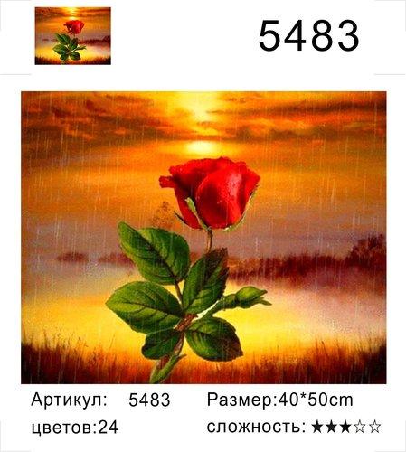 "РД 5483 ""Роза на фоне заката"", 40х50 см"